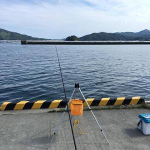 東北で海釣り