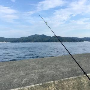東北で海釣り~アナゴの数釣り挑戦編~