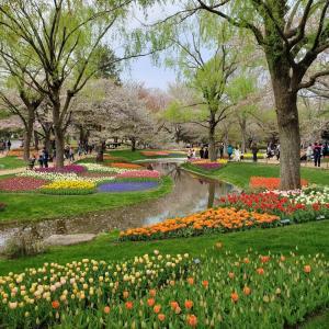 都内の公園・庭園などの画像を貼ってく