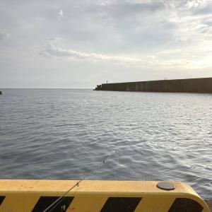 東北で海釣り~秋田の海の底力~
