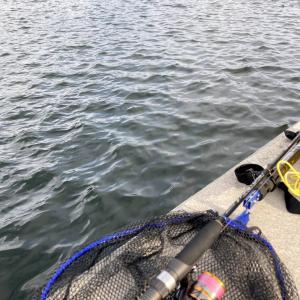 東北で海釣り~夏の日の2021~