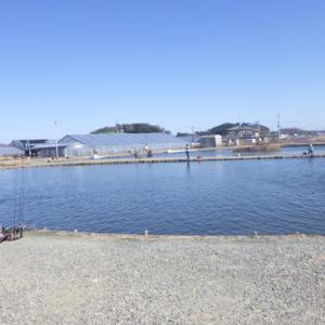 「浜名湖FR」短時間釣行 その1