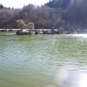 「戸神の池」超久しぶり釣行 最終話