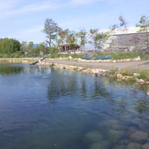 NEW釣り場「高島の泉」釣行 その1