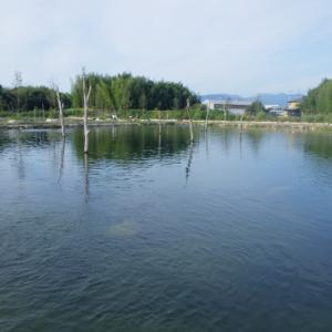 NEW釣り場「高島の泉」釣行 その2