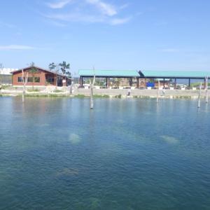 NEW釣り場「高島の泉」釣行 最終話