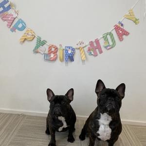 1歳のお誕生日おめでとうございます~☆