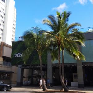 【ハワイ】ホテルは有吉の夏休みで紹介された『ワイキキ・ビーチコマーbyアウトリガー』