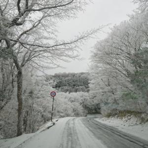 雪を見たくて