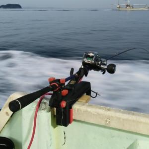 加太の鯵釣り面白かった‼️