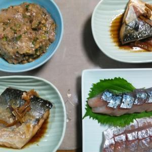 鯵料理2日目‼️