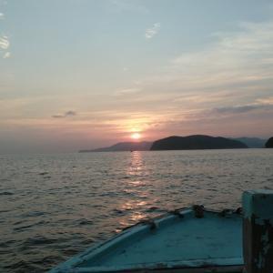 また加太の鯵釣りに行ってきました‼️