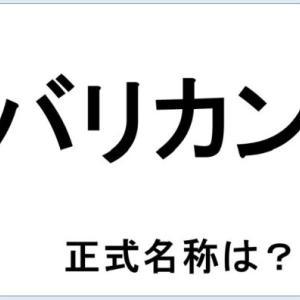 ネット記事より『【クイズ】バリカンの正式名称って何だか言える?意外に知らない!』