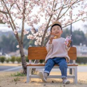 か~わいい桜の撮影会♪