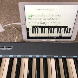 iPadをMIDIキーボードに繋いでみた!