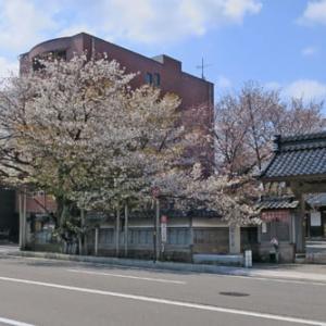 金沢の秋2020 金沢寺町寺院群散歩Vol.3 ①