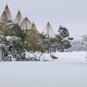 ◇大雪の兼六園2021 ②(ユーチューブ連動解説版)