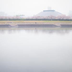 今日の写真「霧の向こうに」-風景