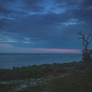 今日の写真「夜の始まる前に」-風景
