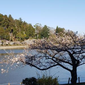 お墓参り(東金八鶴湖)