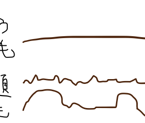 ガタガタザラザラの髪の毛の原因&改善策と、一日一個捨て。16,17個目