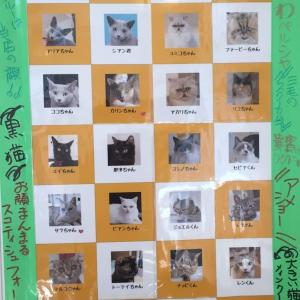 猫スタッフ総選挙2019 始まります。