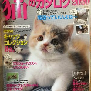 猫のカタログ2020に掲載頂きました。新しくなったHP