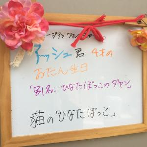 https://cafe.neko-hinata.com/archives/5175.html