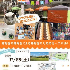 11月28日(土) 年内最終の出張猫カフェ開催!
