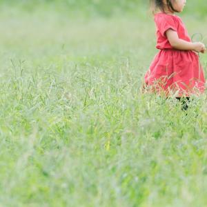 【次女成長記録】2歳7ヶ月