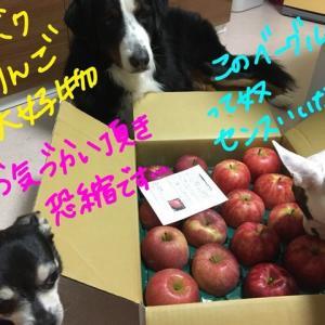 幸せのベーグル林檎