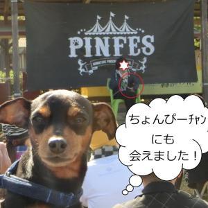 ピンフェス2019 ちょんぴーちゃんに会えたよ♡
