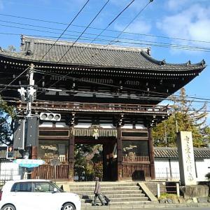 京都の仏像ワンダーランド広隆寺・東寺・三十三間堂を訪ねる(2019/01/06)