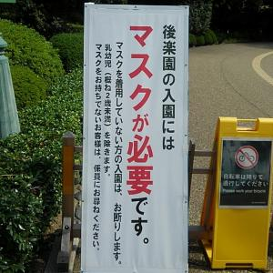本日の岡山後楽園(2020/10/01)