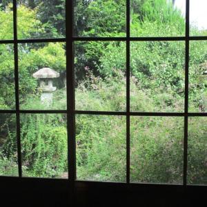 【常駐ガイド】§常林寺#4 台風の影響は最小限