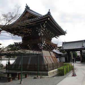 【京都案内】妙蓮寺事前訪問