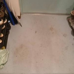 玄関の拭き掃除をした女。