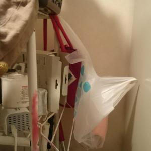 洗面所の袋を片付けた女。