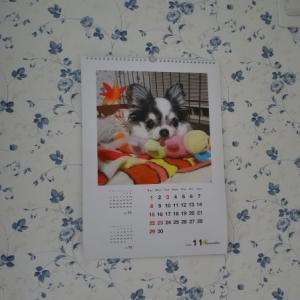 ももとさくらのカレンダー11月