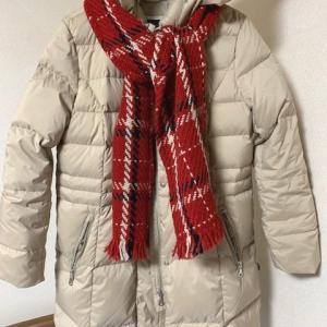 この冬、ダウンコートが超暖、マフラーで楽しむ、子育て失敗したかな・・どうかと思う