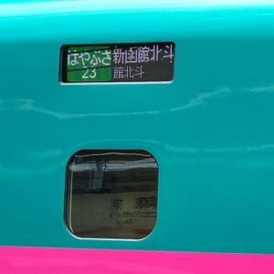 覚悟はしていたけど・・独居、ときどき認知、家の中が大変な事に・・新幹線 で県またぎ帰省