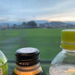 新幹線帰宅すると、不仲な夫が・・ありえない事に、N700S、乗ってみたいな、柿の葉すし食べる。