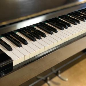 老後の楽しみ方、ピアノもありね、そんな裏技あったとは・・夜ごはんは鰹タタキ、大葉に近づくと・・・。