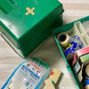 ダッシュで、薬箱、探しましたが、うがい薬、なし、ウィルスに効くそうです、成分が海藻なので安心ですが。