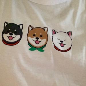 楽しみにしてるブログ、自分のブログ、新しい柴Tシャツ