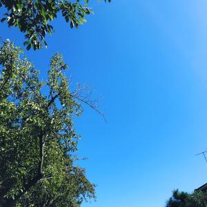ブルーの空に感じる幸せ