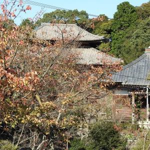 天台宗 鳳樹山興善寺は、全てにおいて完璧な配置と建物の向きを決めていました