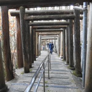 荒神社の社殿は上醍醐の開山堂に向けて造営されていました