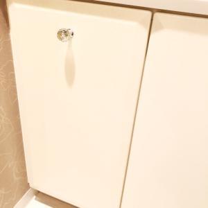 洗面所はガラガラ