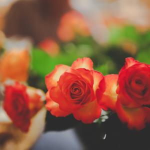 【ご感想】愛され感が倍増した感じ、金運も不安はなく、むしろワクワクする感じです。